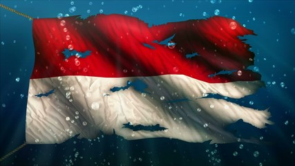 Indonesia Under Water Sea Torn Flag Loop Animation