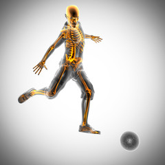 soccer game player radiography image