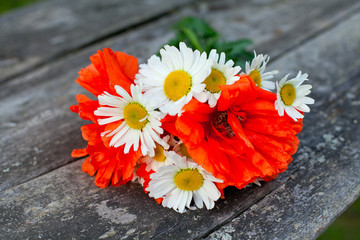 poppies and daisies in bouquet on wooden background