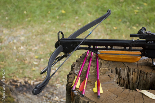 Fotobehang Jacht Crossbow arrows on the stub