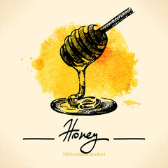 Honey background with hand drawn sketch and watercolor