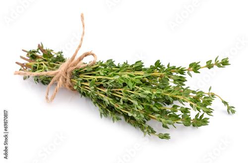 Staande foto Planten Thyme