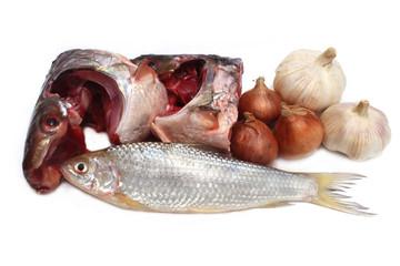 fish,onion,garlic