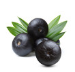 Amazon acai fruit with leaf - 69872267