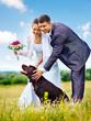 Bride and groom summer outdoor.