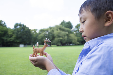 Boy facing the deer toy