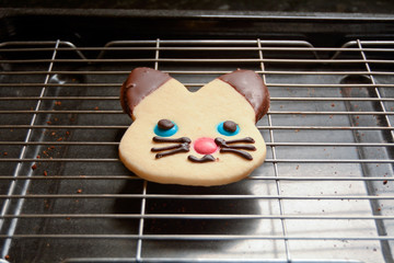 Shortbread cat biscuit on wire rack