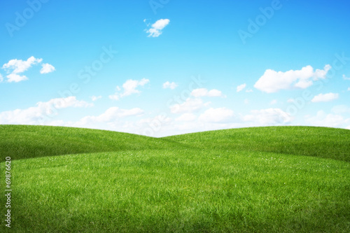 Green field and blue sky - 69876620