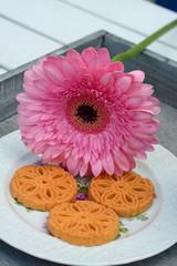 Lekkere koekjes op een schoteltje