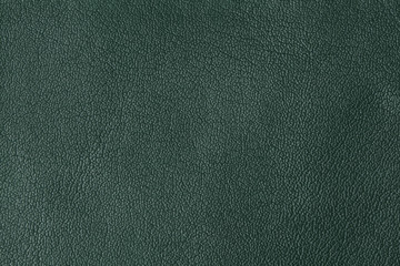 Background with texture of green leather