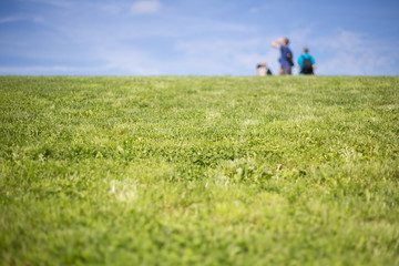 blurred people on grassy hill in background