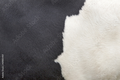 Aluminium Koe part of hide of black and white cow