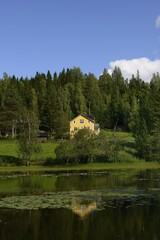 Idyllic, typical swedish cottage in summer time