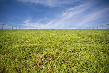 green grass roof and blue sky