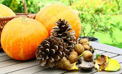 potiron,noix,légume et fruit en automne
