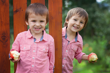 Adorable boys in red shirts, holding apples, smiling
