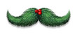 Winter Mustache Decoration - 69886673