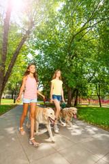 Walking dogs outside in park alle