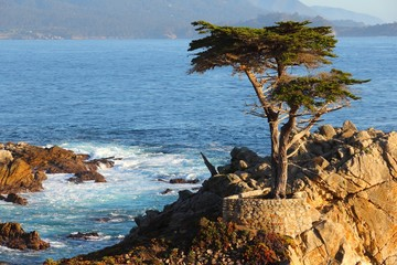 California coast near Monterey