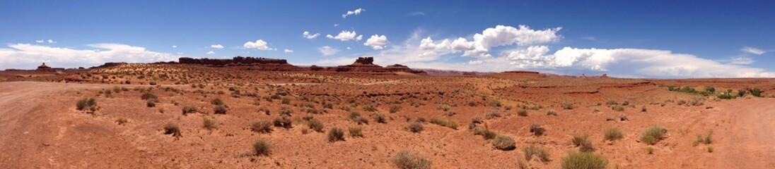 Wüste USA Panorama