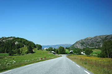 Hihgway through plateau Hardangervidda