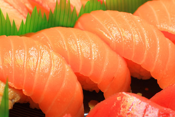 Japanese real sushi food in Japan