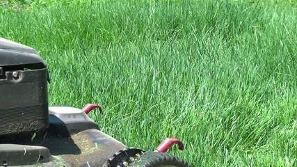 Lawn Mower, Grass Cutter, Landscaping