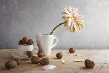 Still life white gerbera cup walnuts