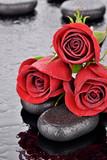 Czerwone róże na kamieniach bazaltowych