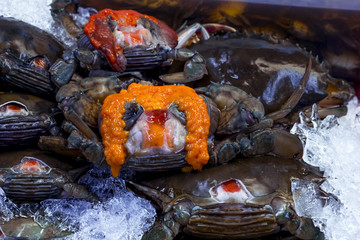 Black Crab  and yolk or Egg crap  lay on ice in seafood supermar