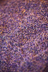 Dry lavender heap