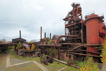Old plant
