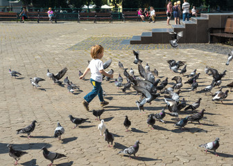Little girl playing with pigeons
