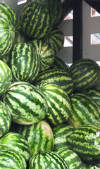 Watermelons at the market