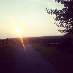 Corsa con tramonto