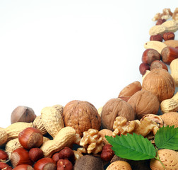 Variety of fresh culinary nuts as a border