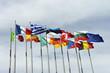 Flaggen, Fahnen, Europäisches Parlament, Europäische Union - 69904081