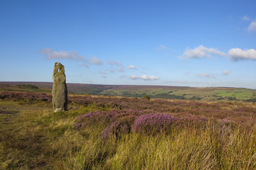 old standing stone