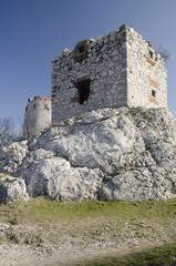Ruin of medieval Devicky castle, Czech republic