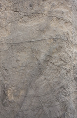 Rough gray rock background texture