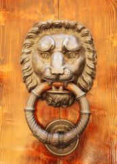 Door knocker in shape of lion's head. Italy. Florence.
