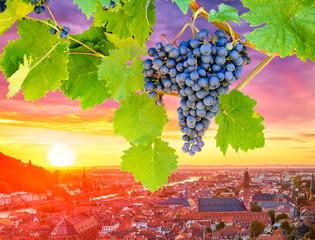 Weinanbaugebiete in Deutschland