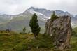 Idyllic alpine landscape at austria - 69910427