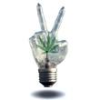 Peace sign light bulb with marijuana leaf