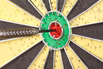 dart in the board