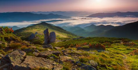 morning mountain plateau landscape (Carpathian, Ukraine)