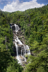 Upper Whitewater Falls in Summer