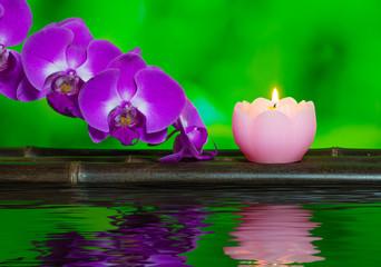 ロウソクと蘭の花