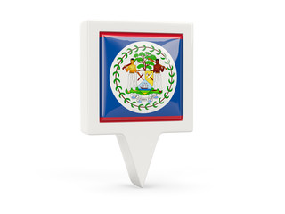 Square flag icon of belize