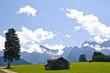 canvas print picture - Baum mit Haus und Bergen